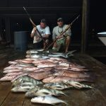 florida-fishing-misc-8710313
