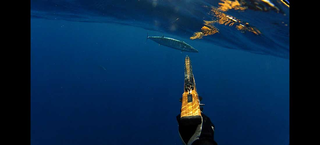 spearfishing-slide7