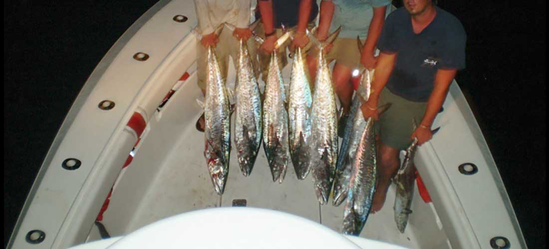 gulf-fishing-slide6